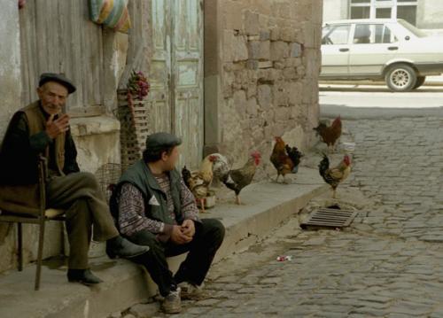 belgesel (12)